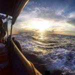 longtail boat rental, phi phi