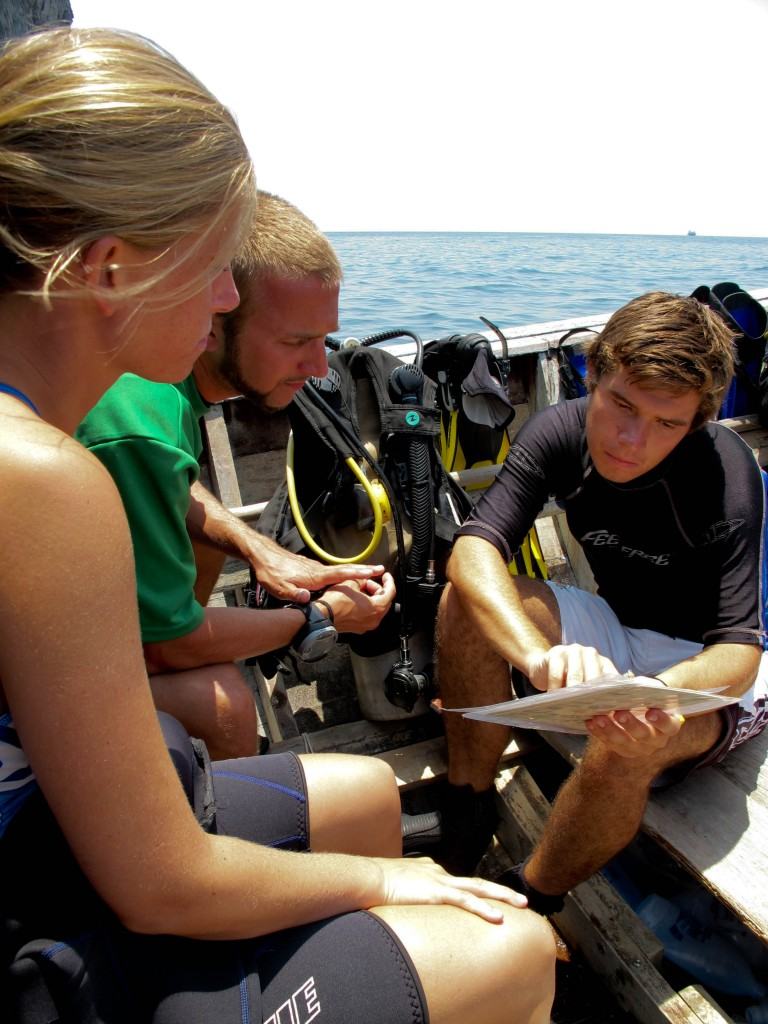 Blue View DIvers, Dive courses,Eco Friendly