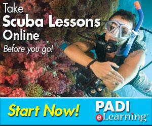 Padi E-learning, Koh Phi Phi, Thailand