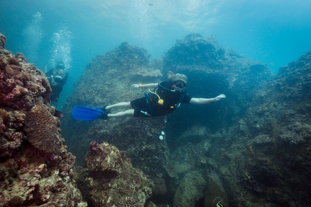 Diving padi open water diver course