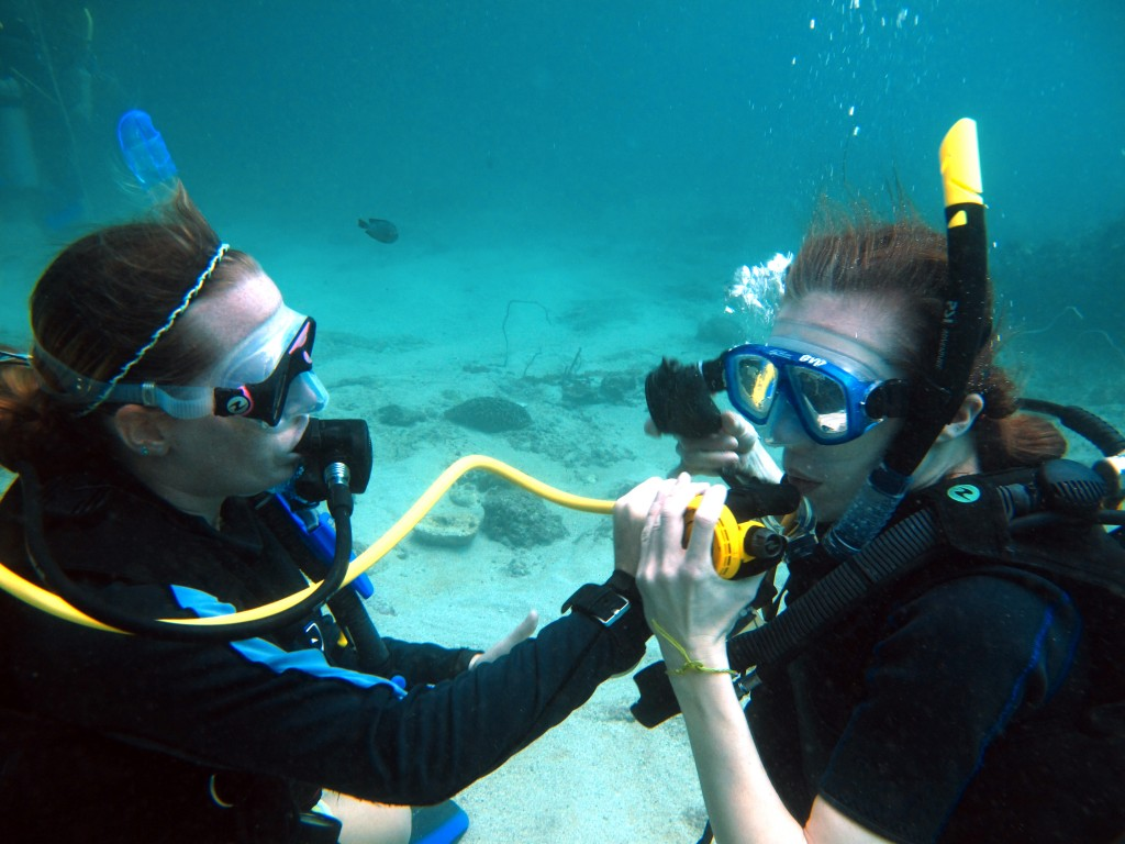 Alternate Air Source Divemaster SCUBA diving skill koh phi phi