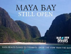 Maya Bay Open - Beach closed