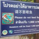 Maya Bay signs have been removed