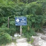 Maya Bay signs have been removed