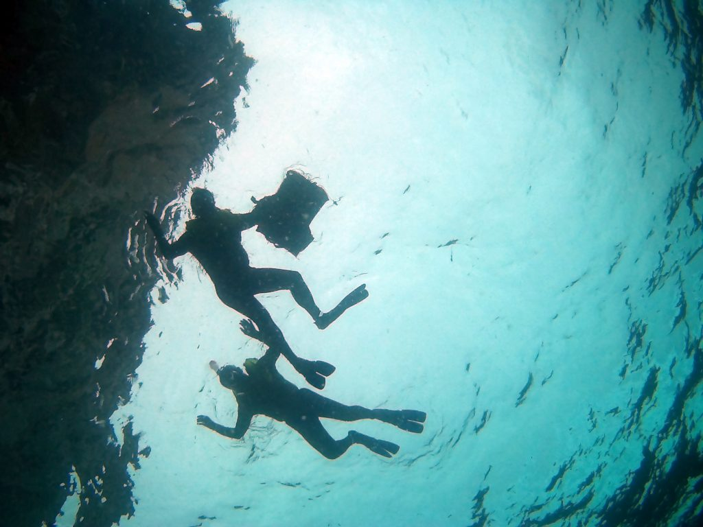 snorkeling diving PADI specialty courses phi phi island dive centre
