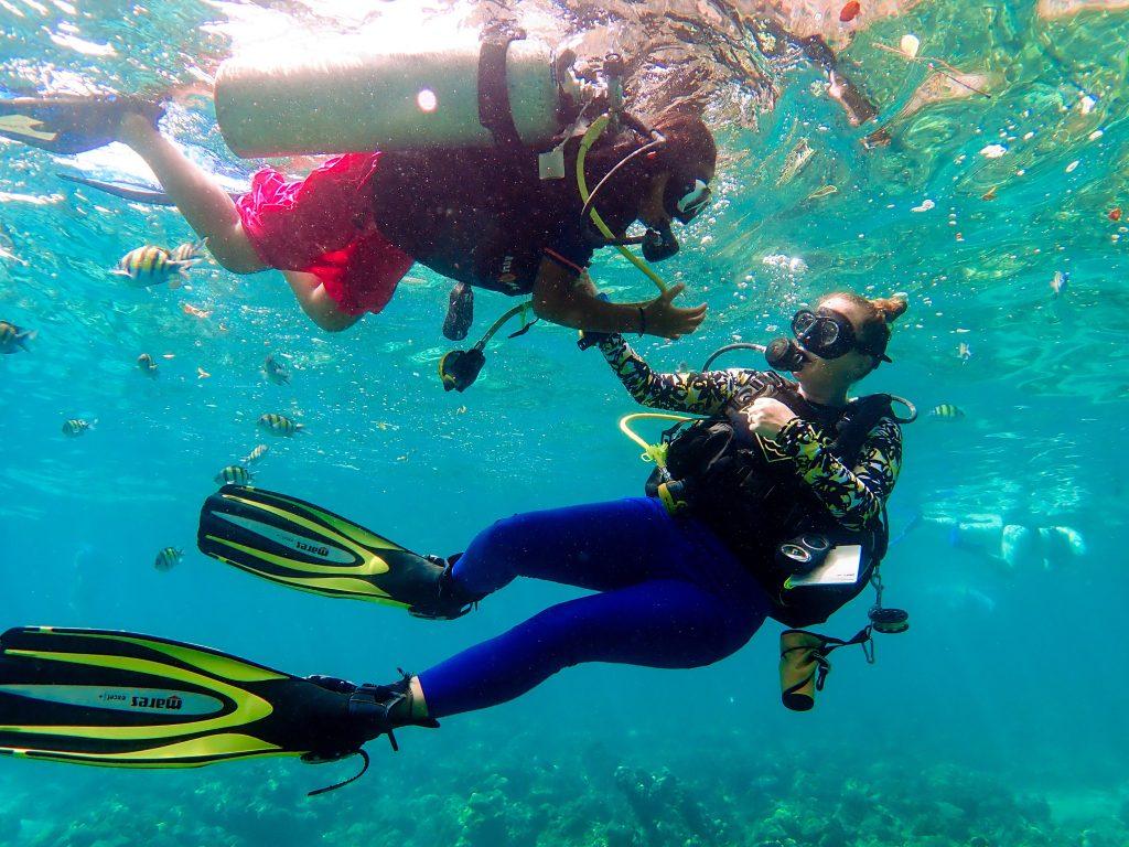 dive course phi phi