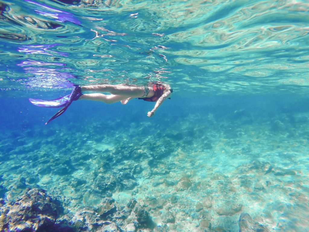 snorkeling phi phi island private longtail rentals