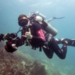 underwater photography PADI specialty
