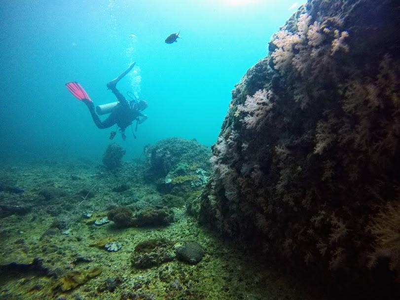 underwater navigator phi phi PADI specialty